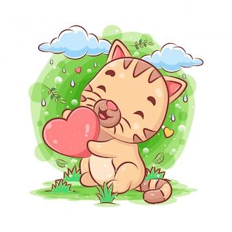 Gato bebê no jardim e segurando coração azul