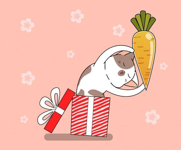 Gato bonito coelho está segurando cenoura dentro de caixa de presente