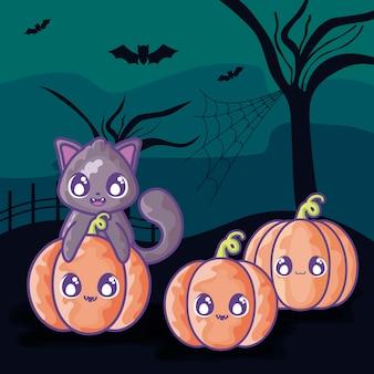 Gato bonito com abóbora na cena de halloween