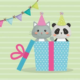 Gato bonito com o cartão de aniversário doce do caráter do kawaii da panda do urso