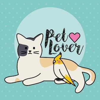 Gato bonito e personagens de adorables de mascotes de pássaro
