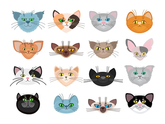 Gato bonito enfrenta ilustração. animais com focinho e conjunto de animais de estimação com bigodes