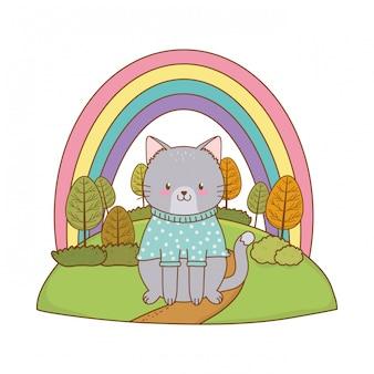 Gato bonito no personagem da floresta de campo