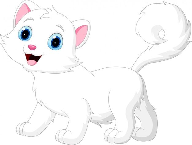 Gato branco engraçado dos desenhos animados, isolado no fundo branco