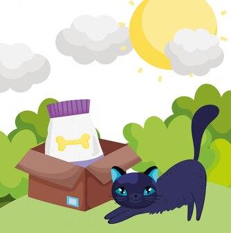 Gato com comida na caixa de animais de estimação ao ar livre