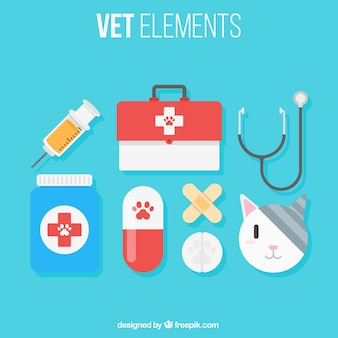 Gato com elementos do veterinário