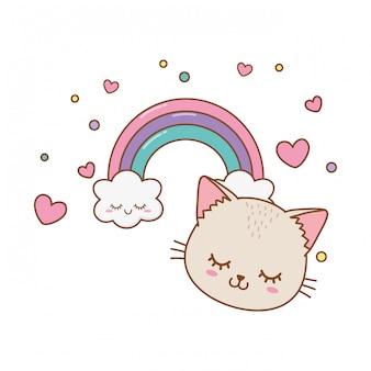 Gato com nuvem e arco-íris