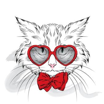 Gato com óculos de coração dia dos namorados