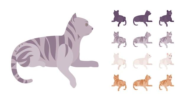 Gato com pedigree listrado branco, preto, laranja, cinza deitado