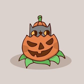 Gato da abóbora de halloween