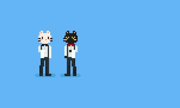 Gato de barman de pixel