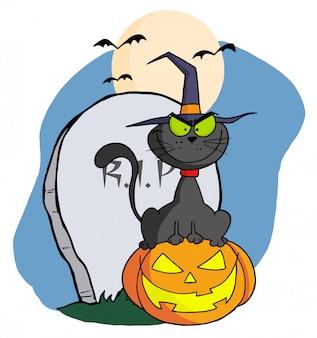 Gato de bruxa negra mal sentado em uma lanterna de jack o