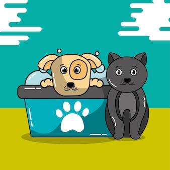 Gato de estimação e cão grooming shampoo banheira