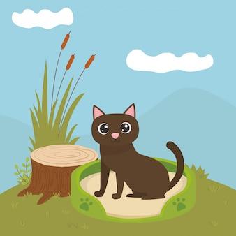 Gato dos desenhos animados