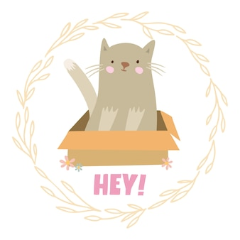 Gato em uma caixa