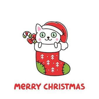 Gato engraçado como presente de meia de natal