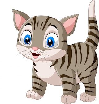 Gato engraçado dos desenhos animados isolado