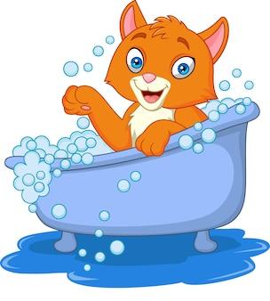 Gato engraçado dos desenhos animados, tempo de banho