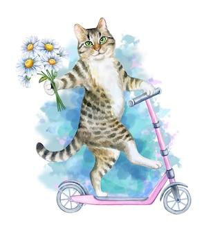 Gato engraçado e brincalhão monta uma scooter rosa isolada no fundo branco ilustração em aquarela