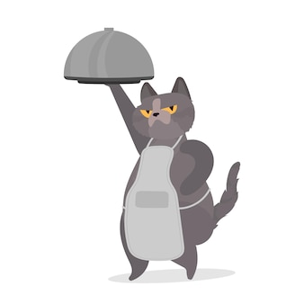 Gato engraçado segura um prato de metal com tampa. um gato com um olhar engraçado. bom para adesivos, cartões e camisetas. isolado. vetor.