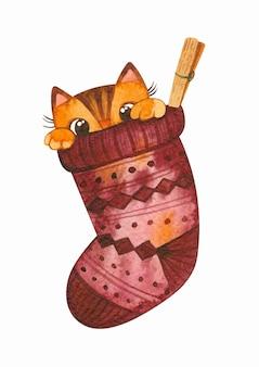 Gato escondido na meia de natal gatinho brincalhão bonito ilustração em aquarela de inverno