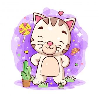 Gato feliz em pé no jardim e cacto flor em pote