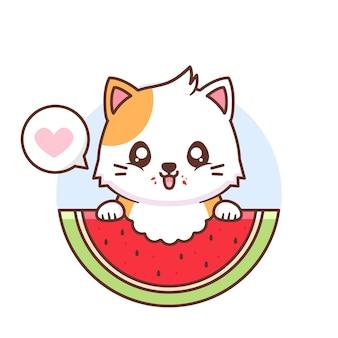 Gato fofo e feliz comendo melancia