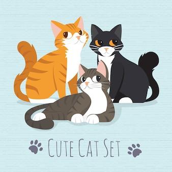 Gato fofo gatinho