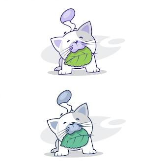 Gato fofo