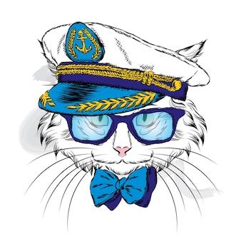 Gato lindo de boné e óculos