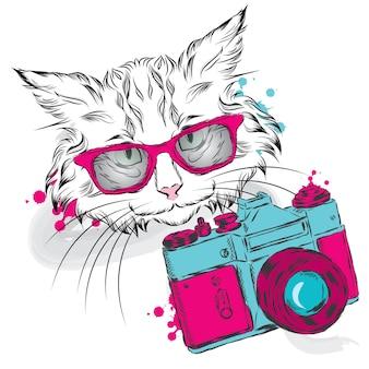 Gato lindo e câmera vintage