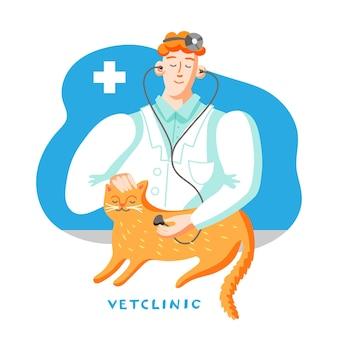 Gato no consultório veterinário, médico examinando animal de estimação com estetoscópio