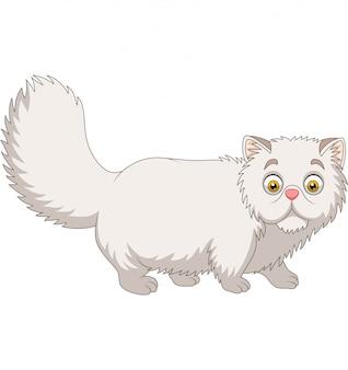 Gato persa de desenhos animados em branco