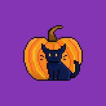 Gato pixel com mascote personagem de halloween com abóbora