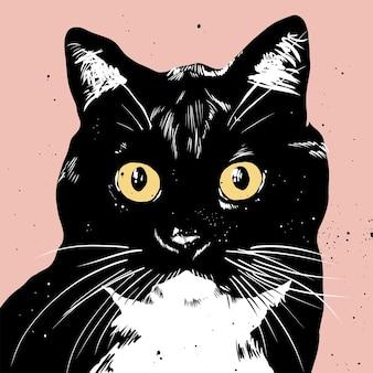 Gato preto e branco pop art