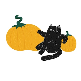 Gato preto fofo e gordo de halloween sentado sobre abóboras gato doodle desenhado à mão em vegetais laranja