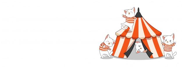 Gatos adoráveis e a ilustração de circo