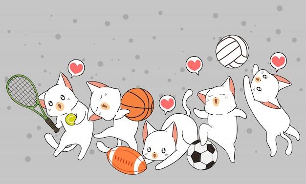 Gatos adoráveis e instrumento desportivo