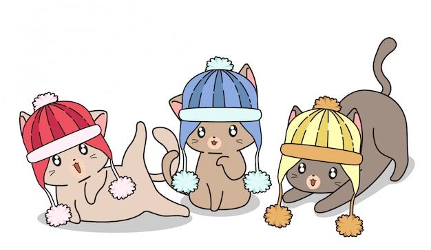 Gatos adoráveis estão usando chapéu de malha