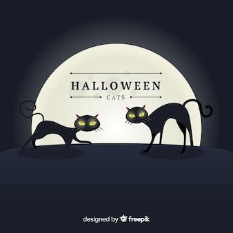 Gatos assustadores de halloween com design plano