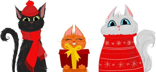 Gatos de ano novo com um suéter com cachecol e um presente
