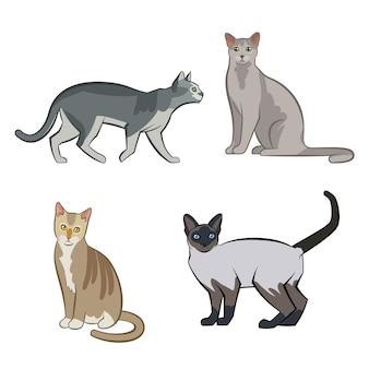 Gatos de coleção de diferentes raças. gato isolado de vetor. ilustração em vetor de animais domésticos com rostos bonitos