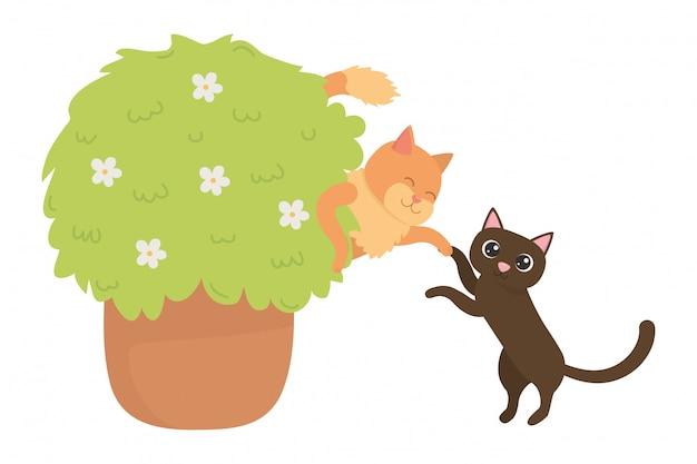 Gatos de desenhos animados