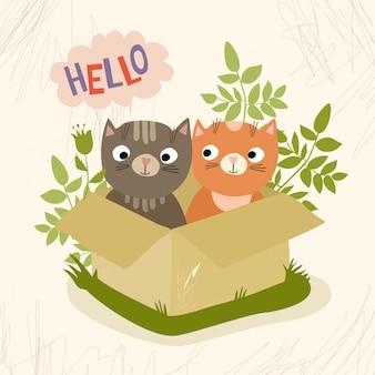 Gatos dentro de uma caixa Vetor grátis
