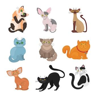 Gatos domésticos de desenho animado. ilustração de animal com cauda e bigodes