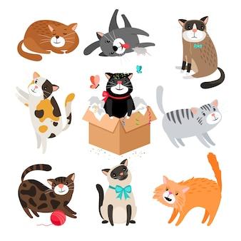 Gatos dos desenhos animados isolados no branco