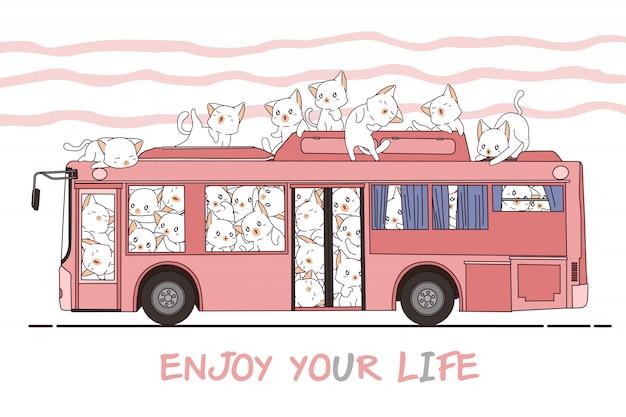Gatos e ônibus kawaii
