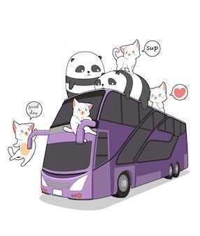 Gatos e pandas kawaii no ônibus