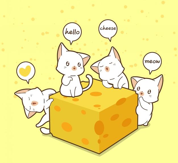 Gatos e queijo kawaii