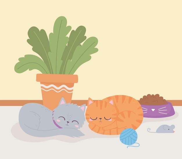 Gatos fofos descansando na sala com plantas e brinquedos